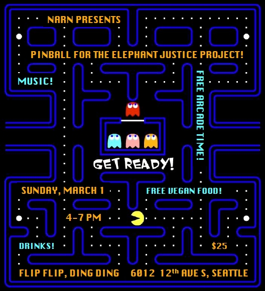 Poster for Pinball Fundraiser
