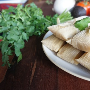 Vegan Tamale Cooking Class for aCause